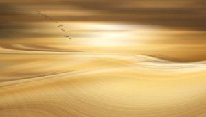 golden sky light image